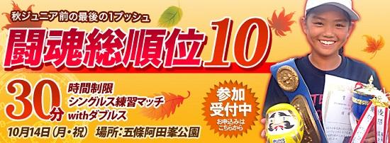 闘魂総順位10バナーユニークスタイル